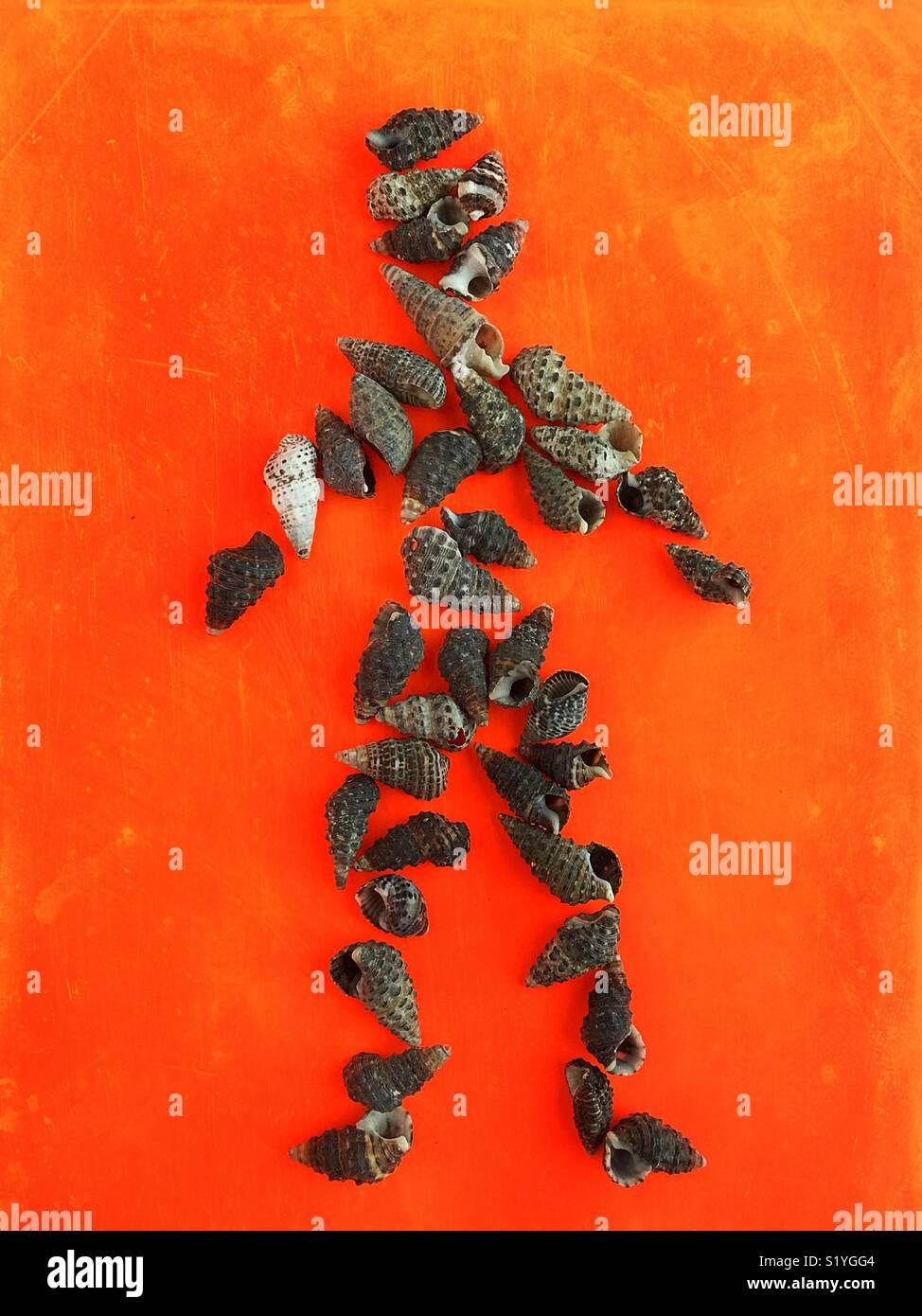 Still Life de coquillages en forme de personne. Photo Stock