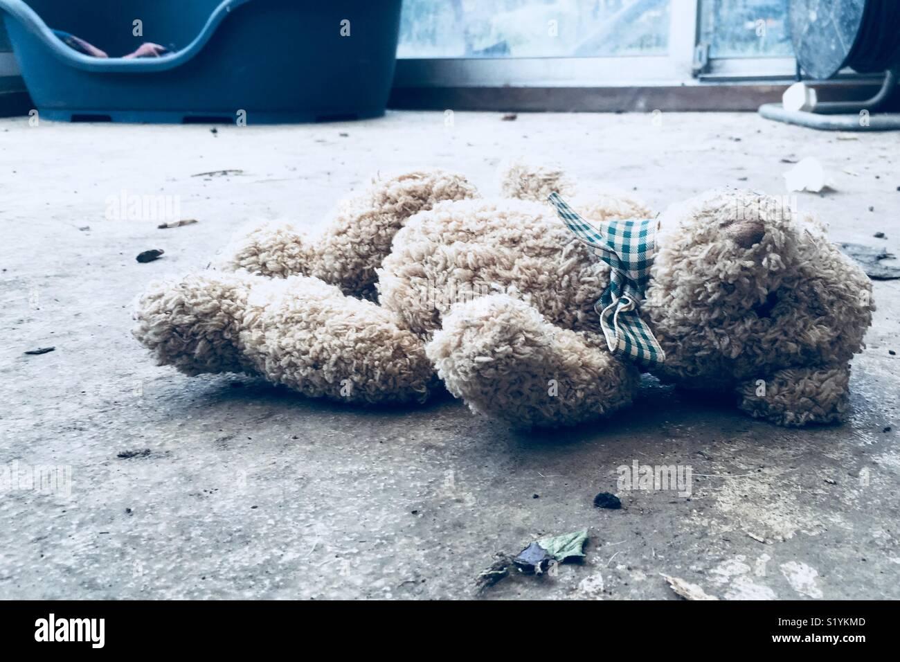 Ours en peluche abandonné Photo Stock