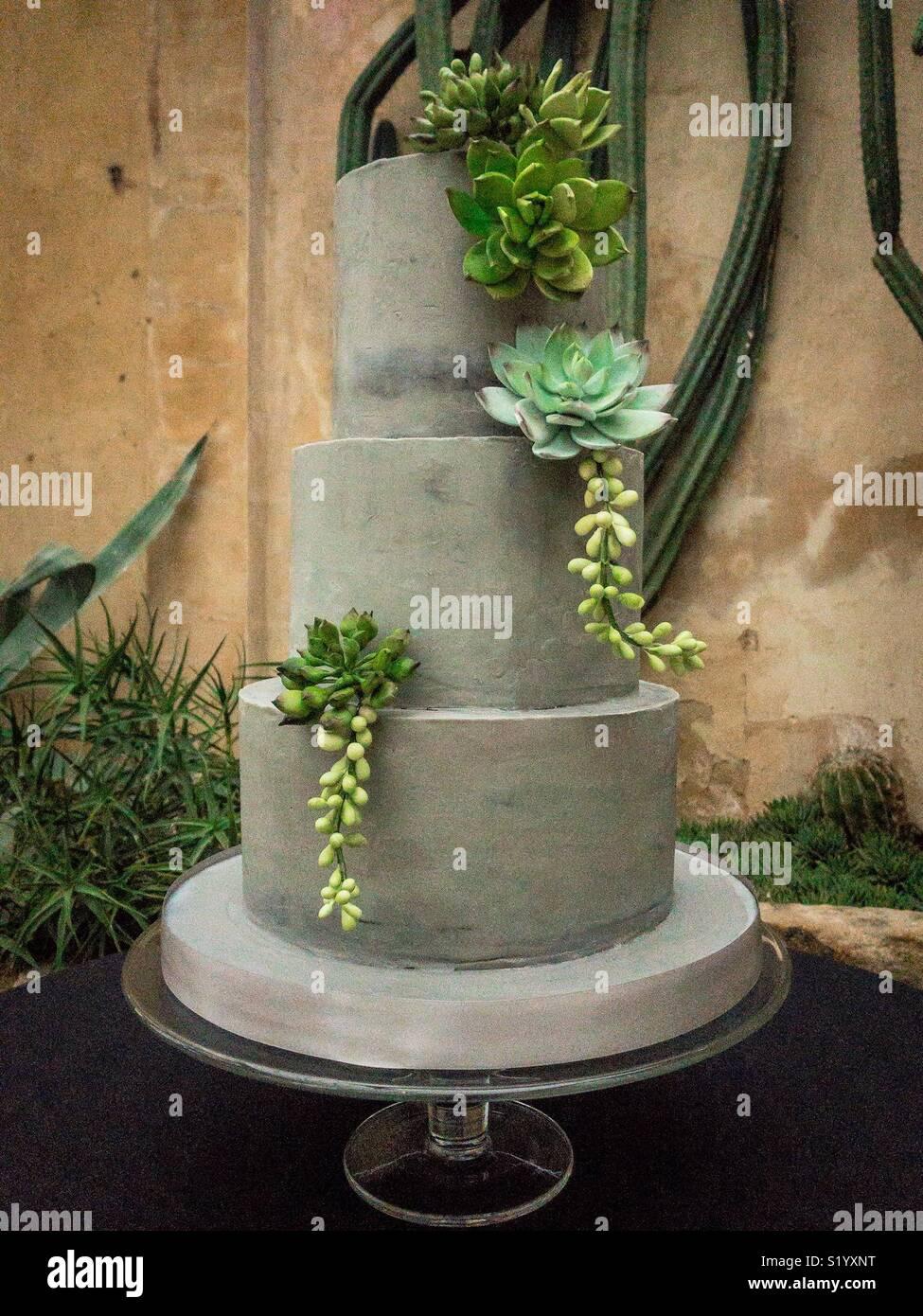 Trois brutaliste gâteau de mariage avec des décorations en sucre succulentes Photo Stock
