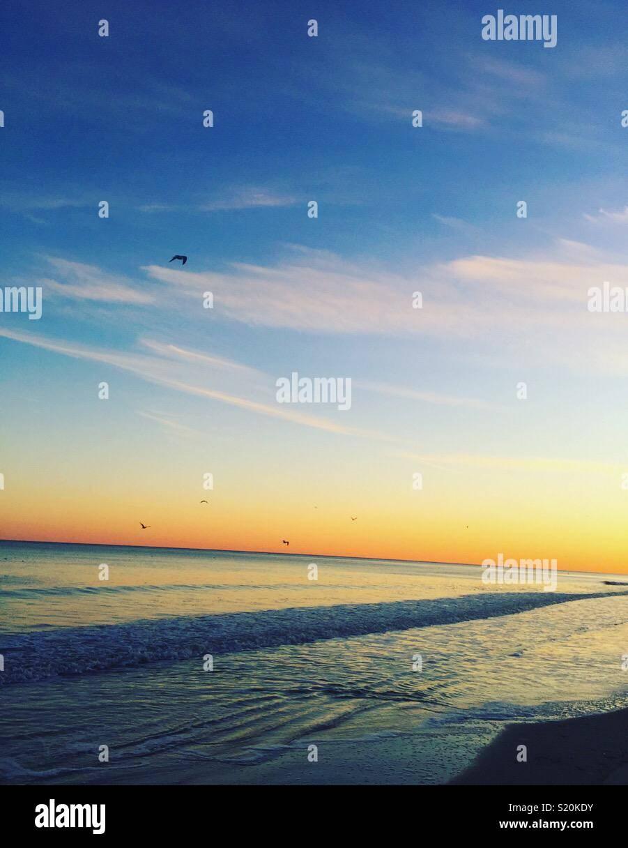 """""""Une vie simple est bonne avec moi. Je n'avez pas besoin de tout. Pour moi, un T-shirt, un short, des pieds nus sur une plage et je suis heureux.' ~ Yanni Photo Stock"""
