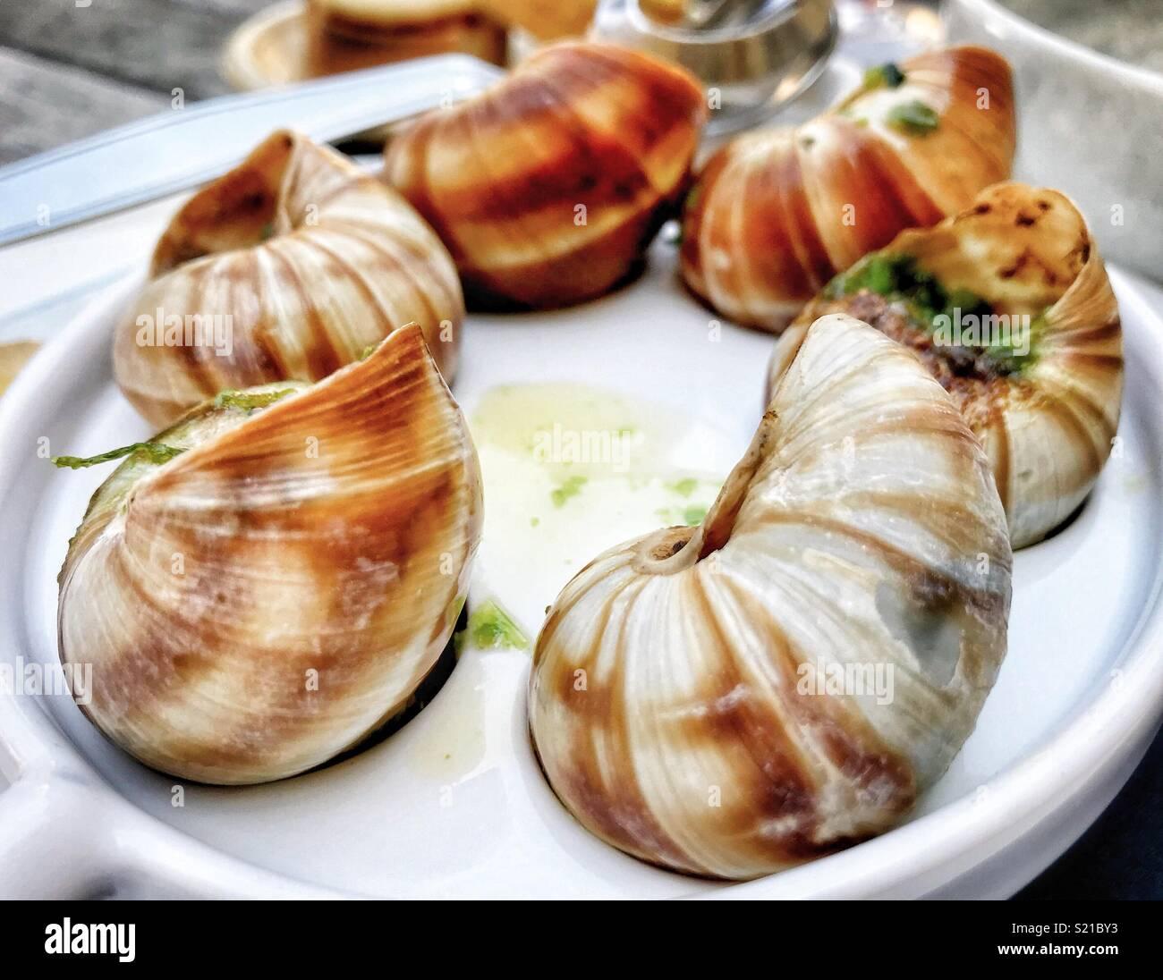 Les escargots- qui suinte l'ail et le persil. Lickingly fabricants de nourriture incroyable Photo Stock