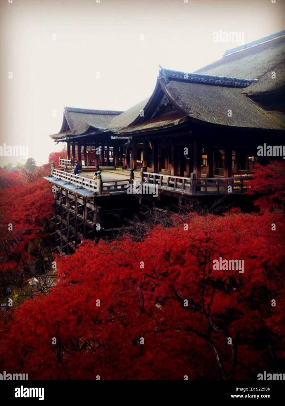 Temple Kiyomizu, Kyoto, Japon Photo Stock