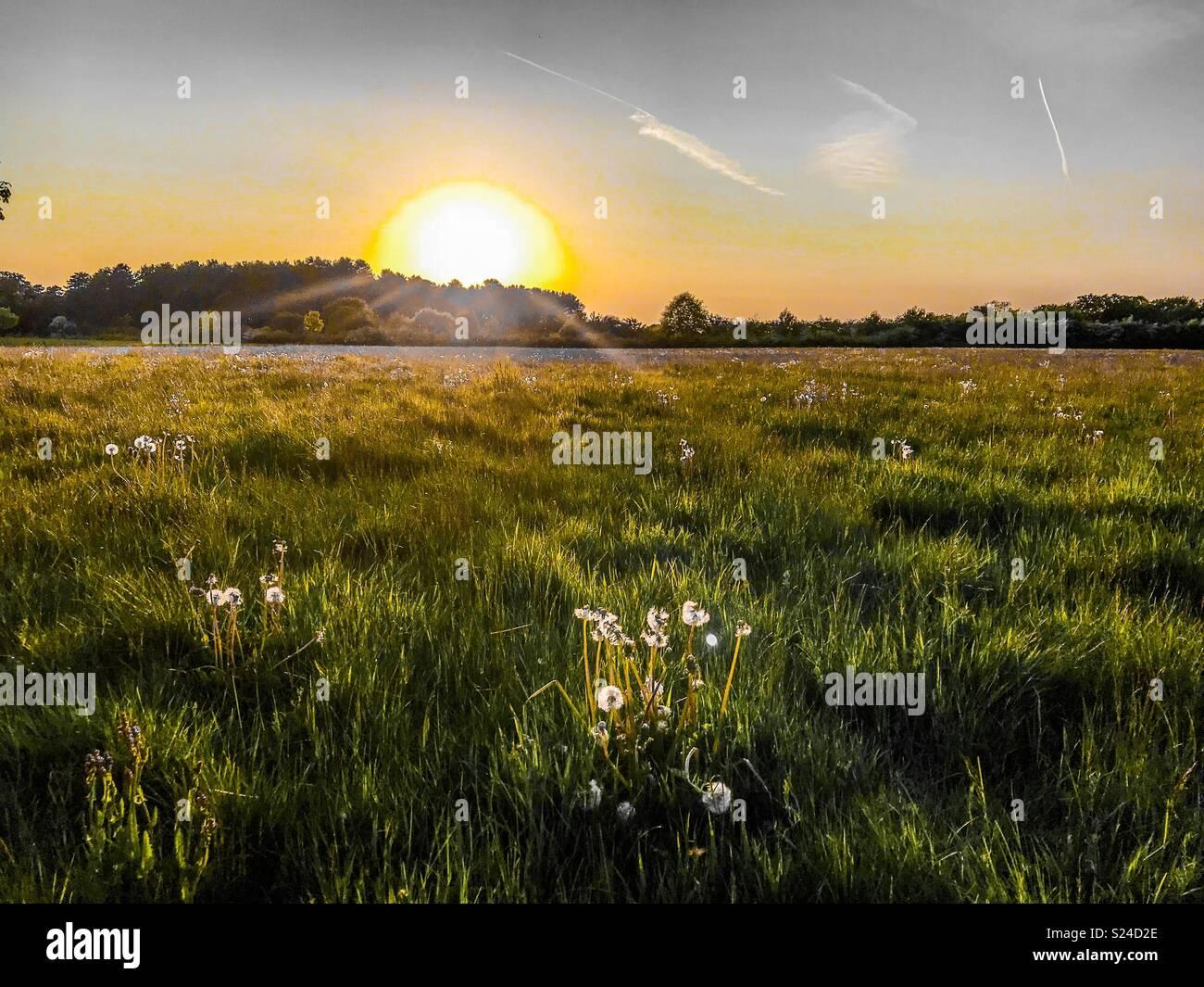 Pays de marche au coucher du soleil Photo Stock