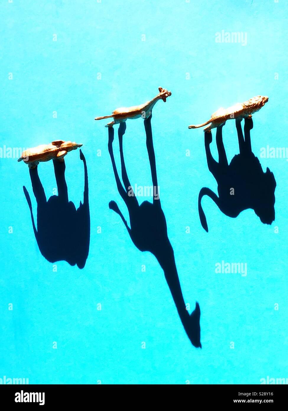Figurines d'animaux exotiques et les ombres. Photo Stock