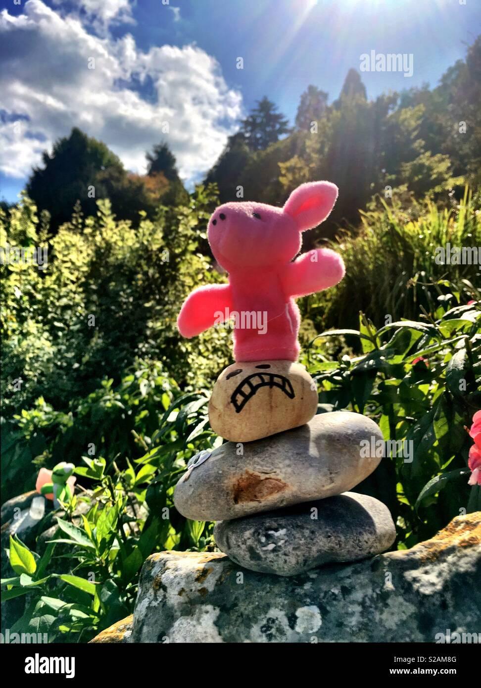 Fingerpuppet cochon en équilibre sur des pierres Photo Stock
