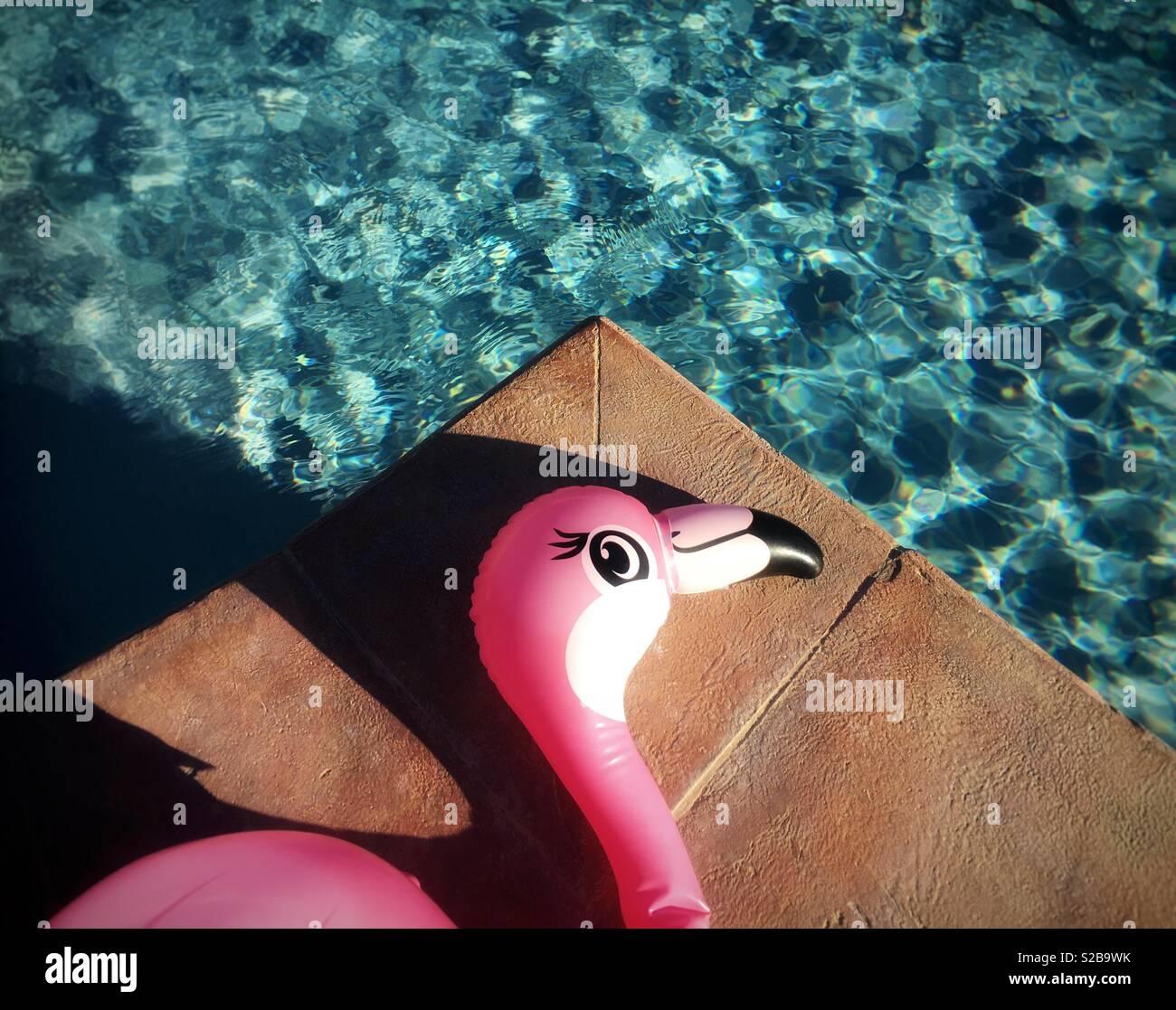 Flamant rose gonflable de soleil à côté de la piscine Photo Stock