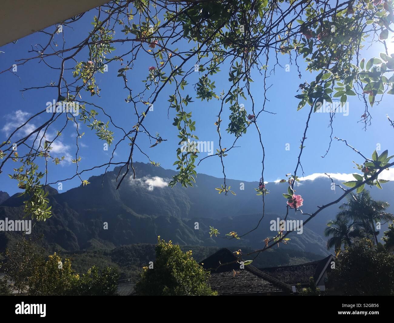 Île de la Réunion Photo Stock