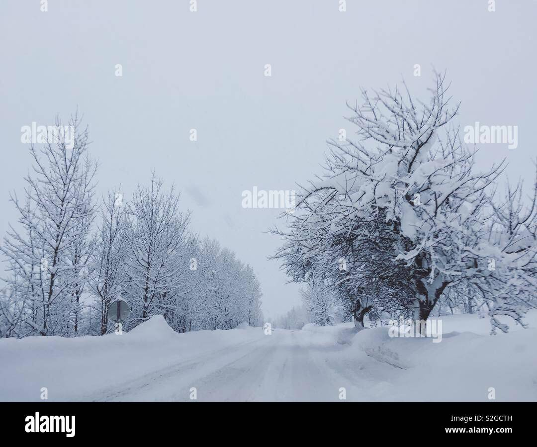 La conduite sur une route couverte de neige hiver tranquille dans la neige profonde. Banque D'Images