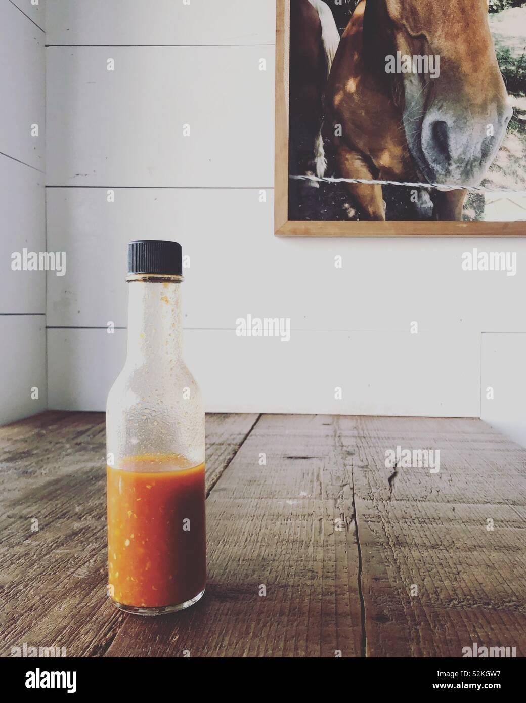 Cheval et hot sauce Banque D'Images