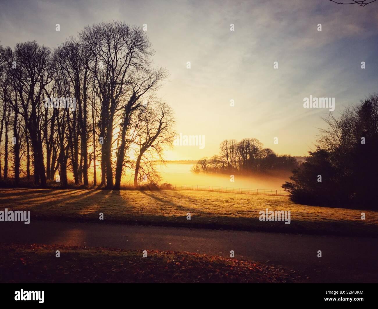 Coucher de soleil sur la campagne brumeuse. Photo Stock