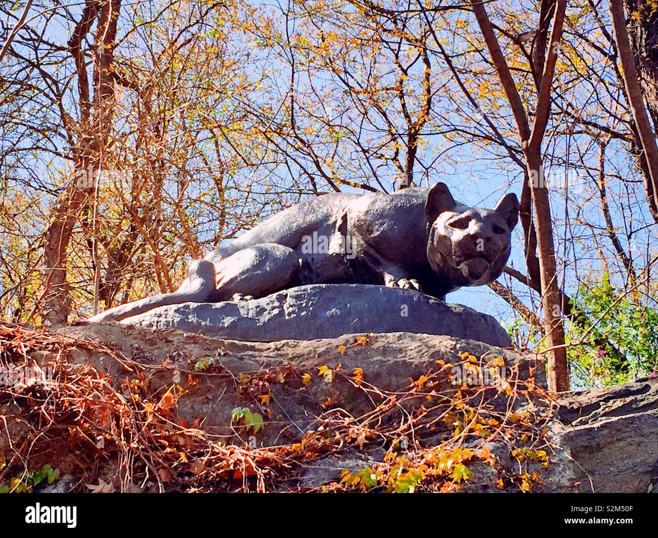 """"""" Chassons toujours"""" sculpture cougar, East Drive,""""Cat Hill"""", Central Park, NYC Banque D'Images"""