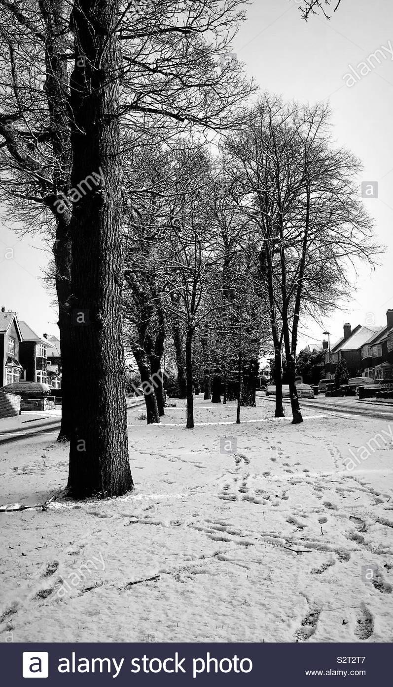 Promenade d'hiver Photo Stock