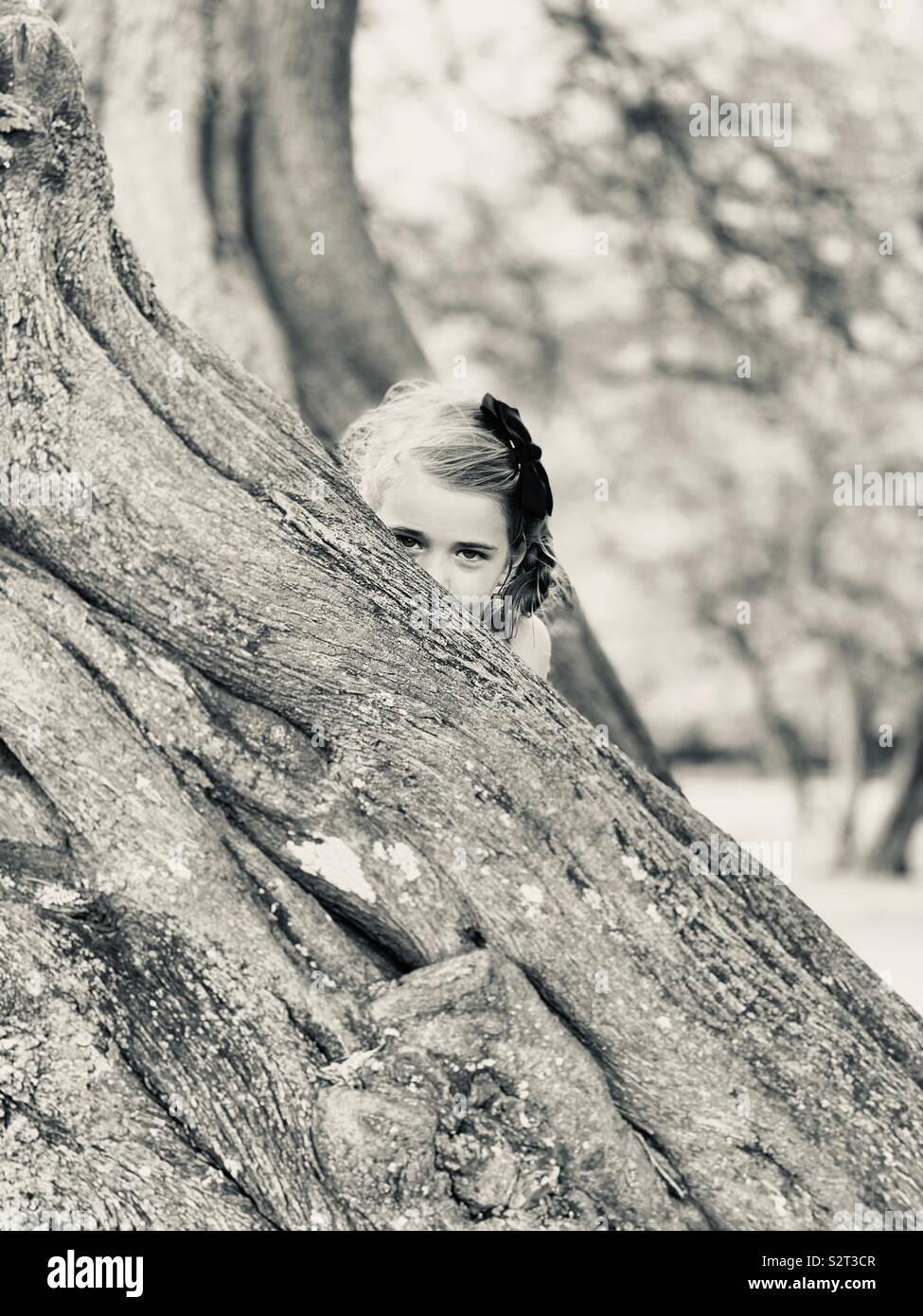 Peek-a-boo Photo Stock
