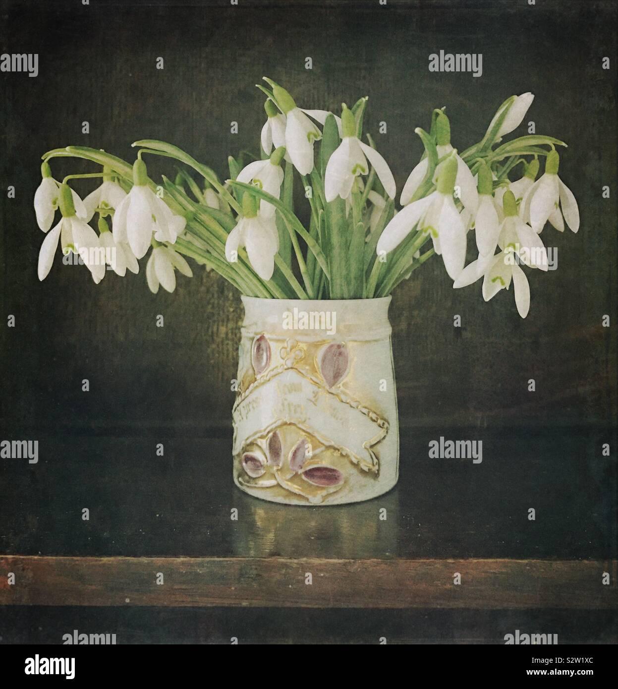 Vase de perce-neige Banque D'Images