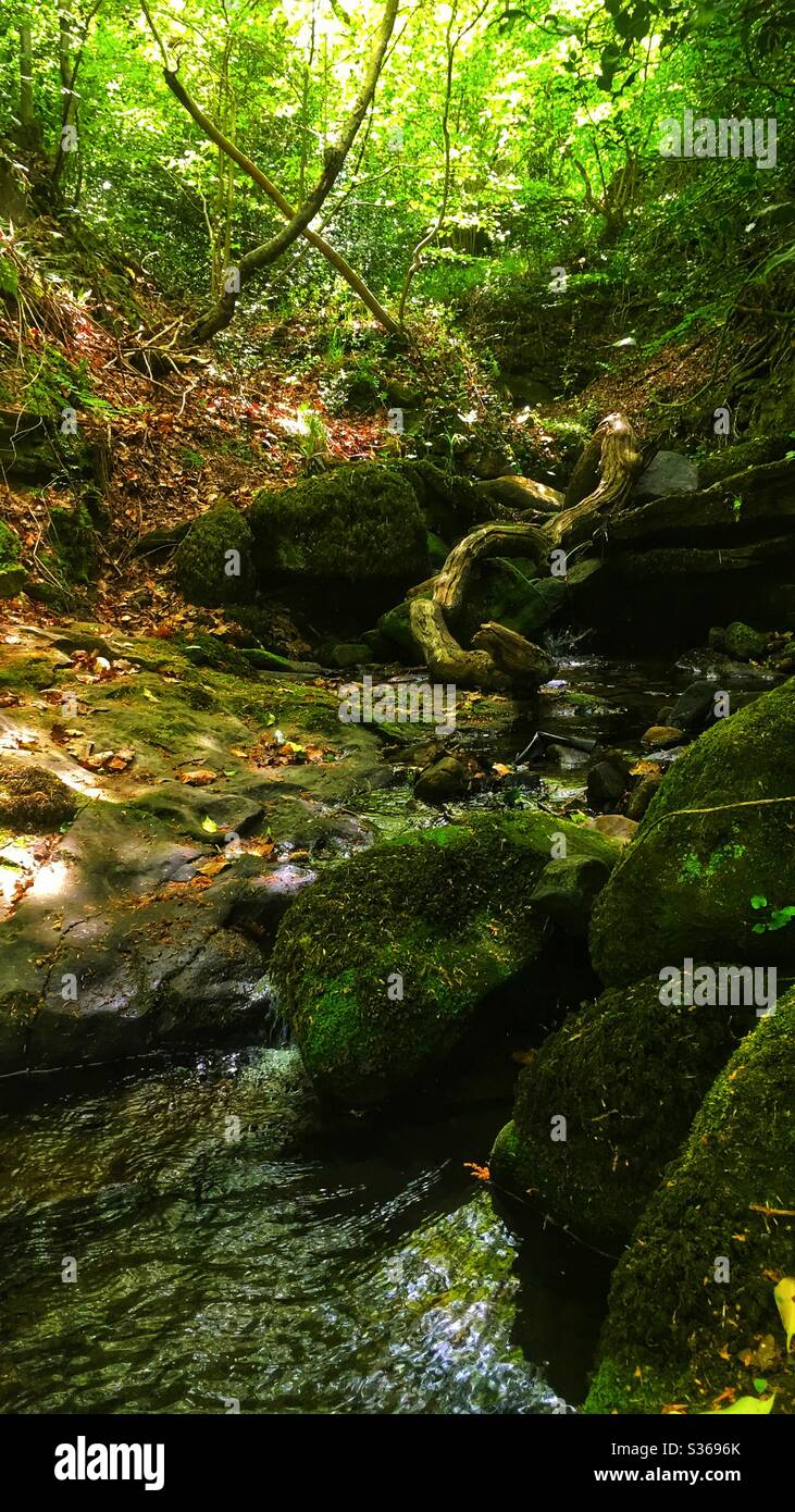 Rivelin Valley Sheffield Banque D'Images