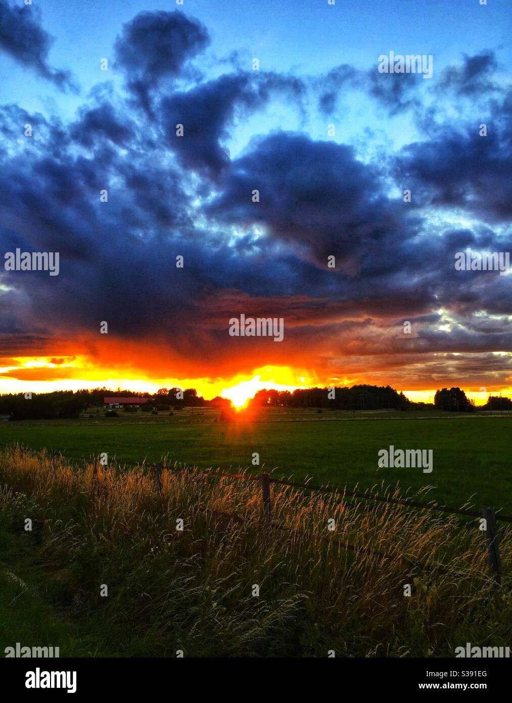 Coucher de soleil sur les champs agricoles ruraux à Märsta, dans le comté de Stockholm, en Suède. Ferme avec une grange en arrière-plan. Banque D'Images