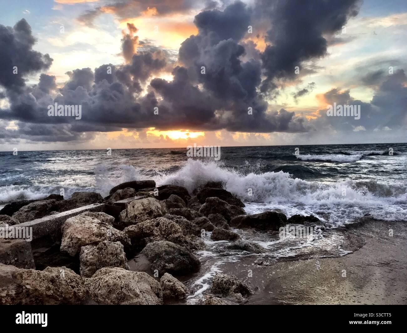 Matin sur l'île de Palm Beach Banque D'Images