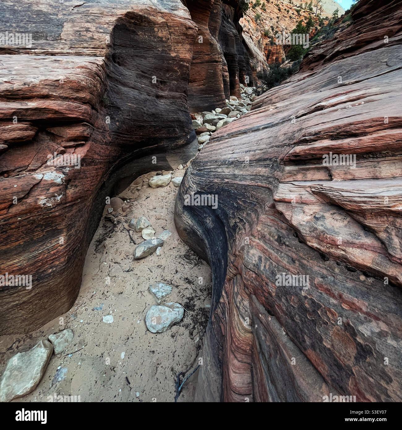 Entrée au Keyhole Canyon au parc national de Zion, Utah Banque D'Images