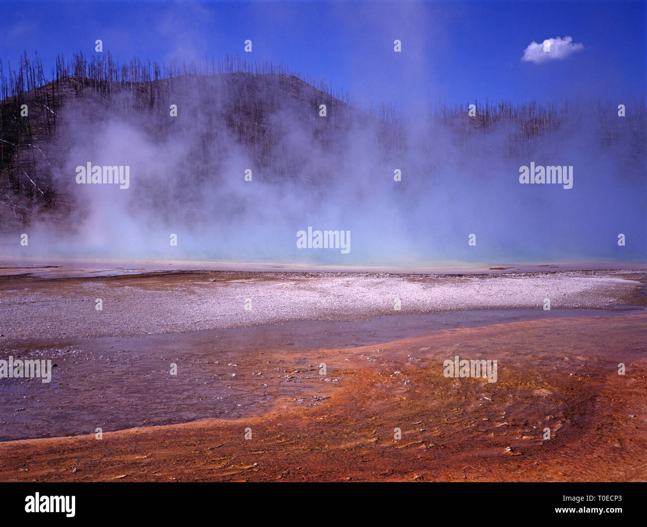 USA. Le Wyoming. Le Parc National de Yellowstone. Midway Geyser Basin. Grand Prismatic Spring. Photo Stock