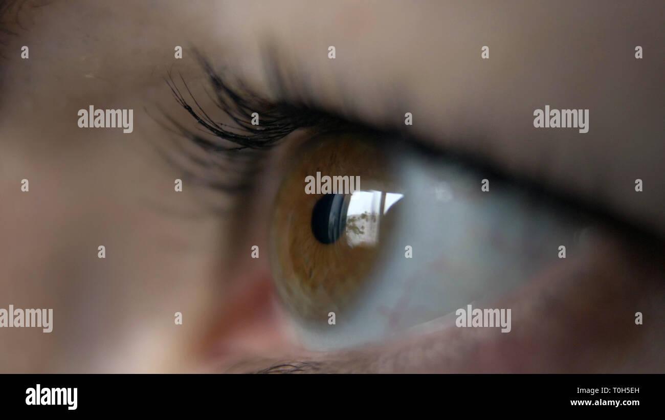 Oeil d'une femme Vue de côté, reflet d'une fenêtre, les yeux bruns, l'analyse macro Banque D'Images