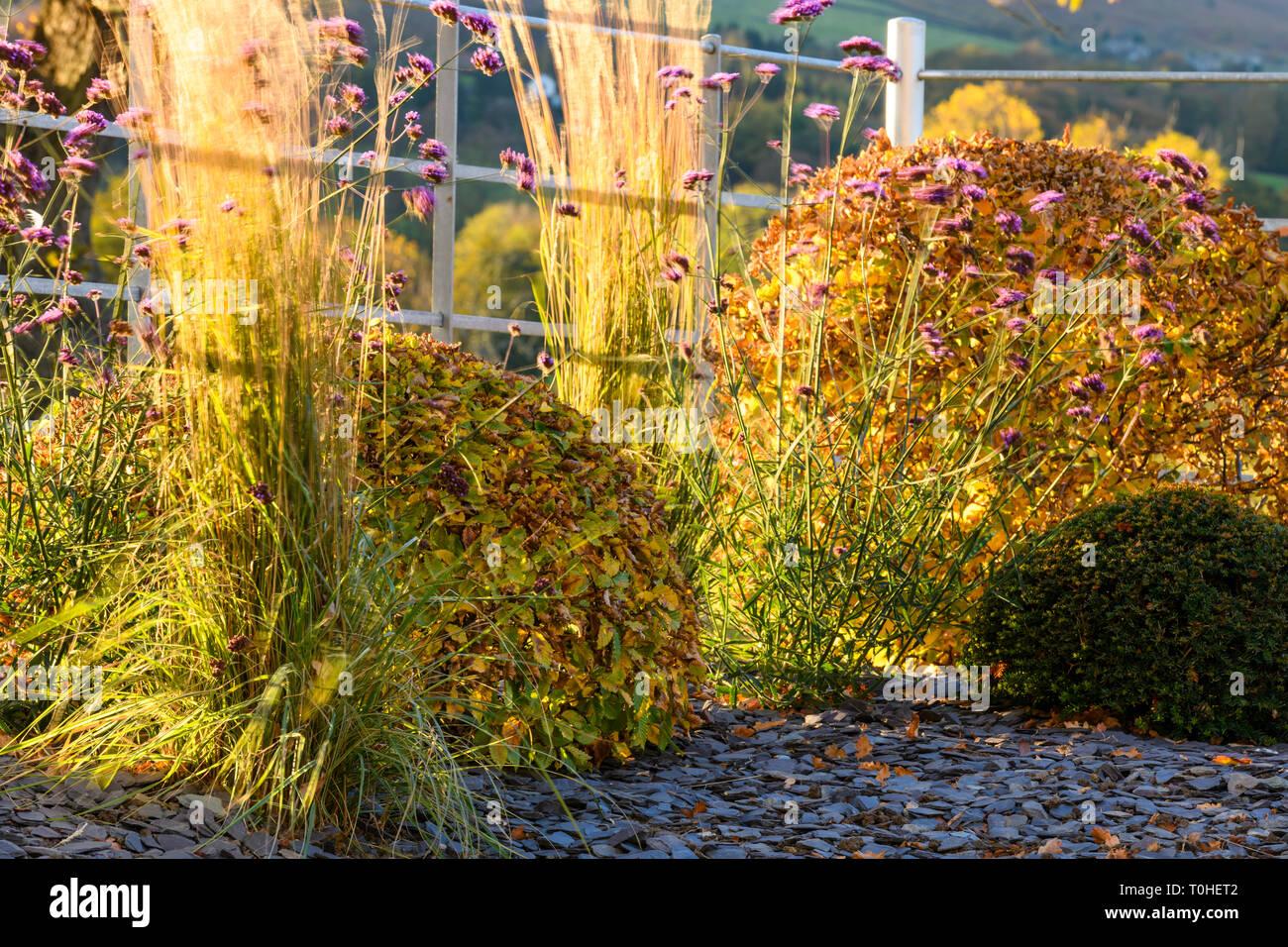 La couleur en automne dans le magnifique jardin privé - élégant et ...