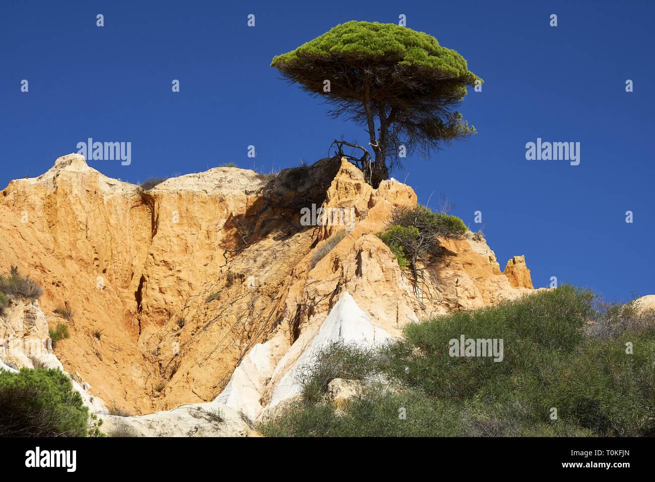 Praia da Falésia (Praia das Belharucas Barranco), Vilamoura, Quarteira, Faro, Algarve, Portugal Banque D'Images