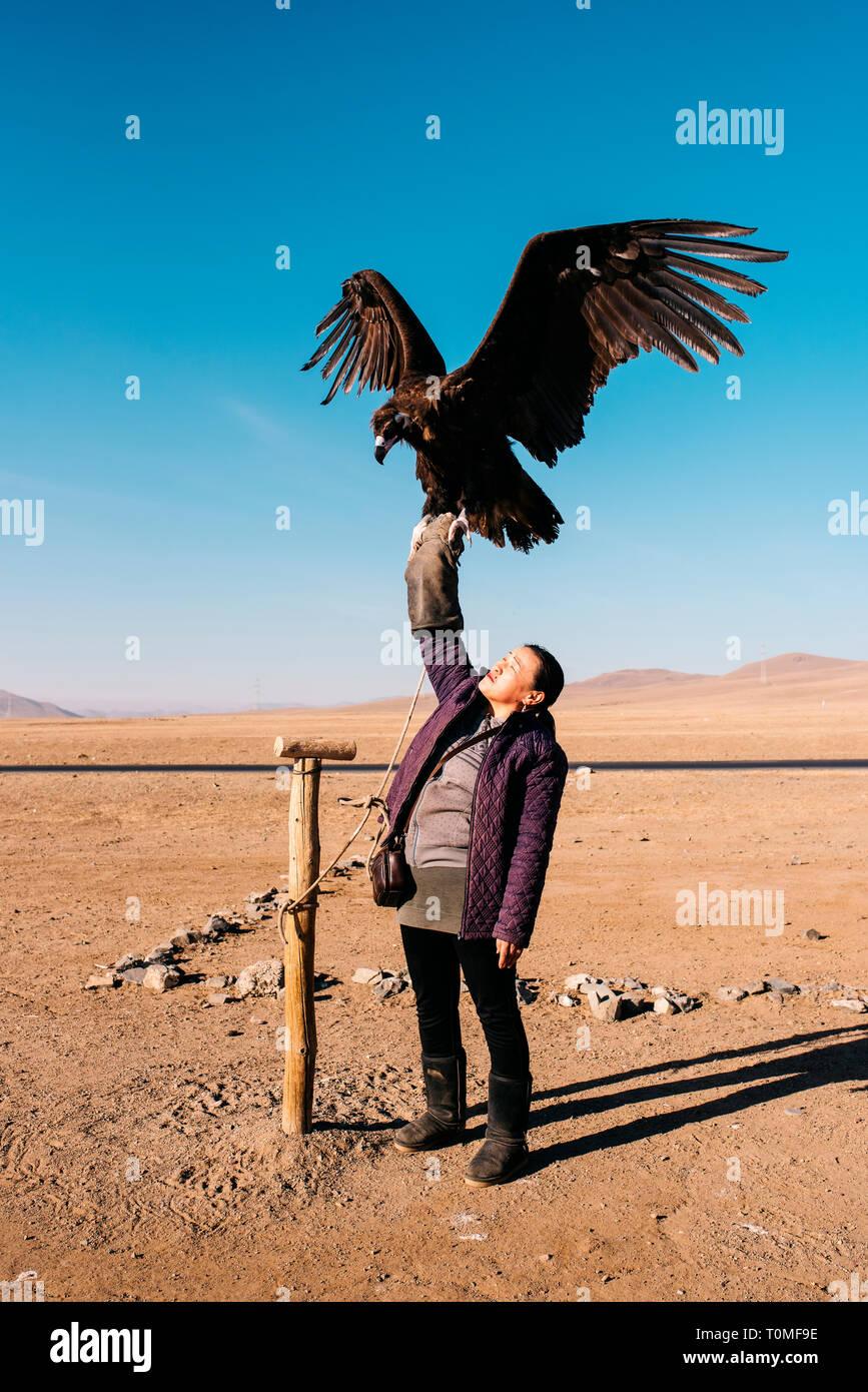 Avec mongol cinereous vulture (Platycnemis monachus), la Mongolie Banque D'Images