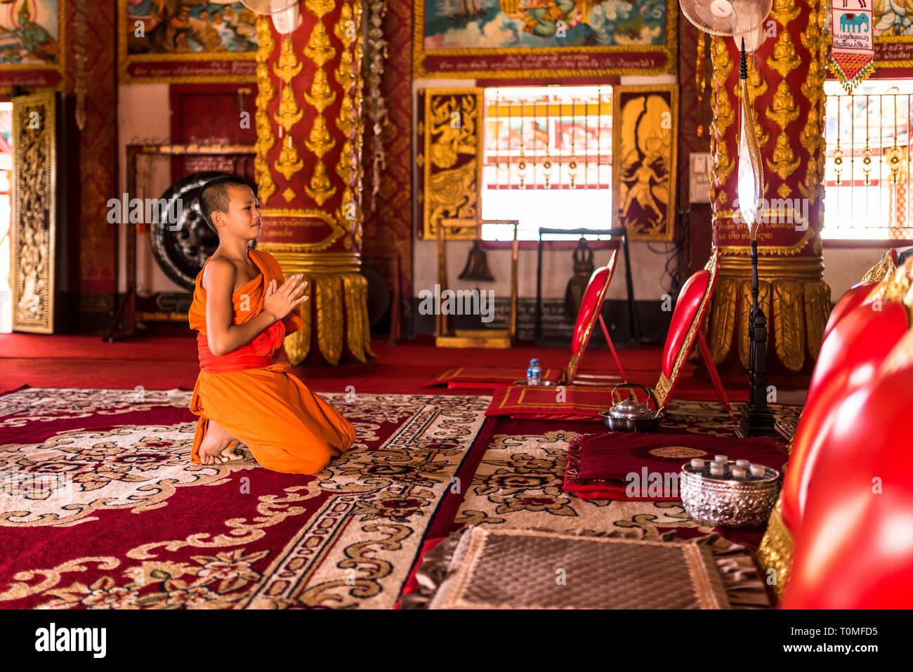 Jeune moine dans un temple, au Laos Banque D'Images