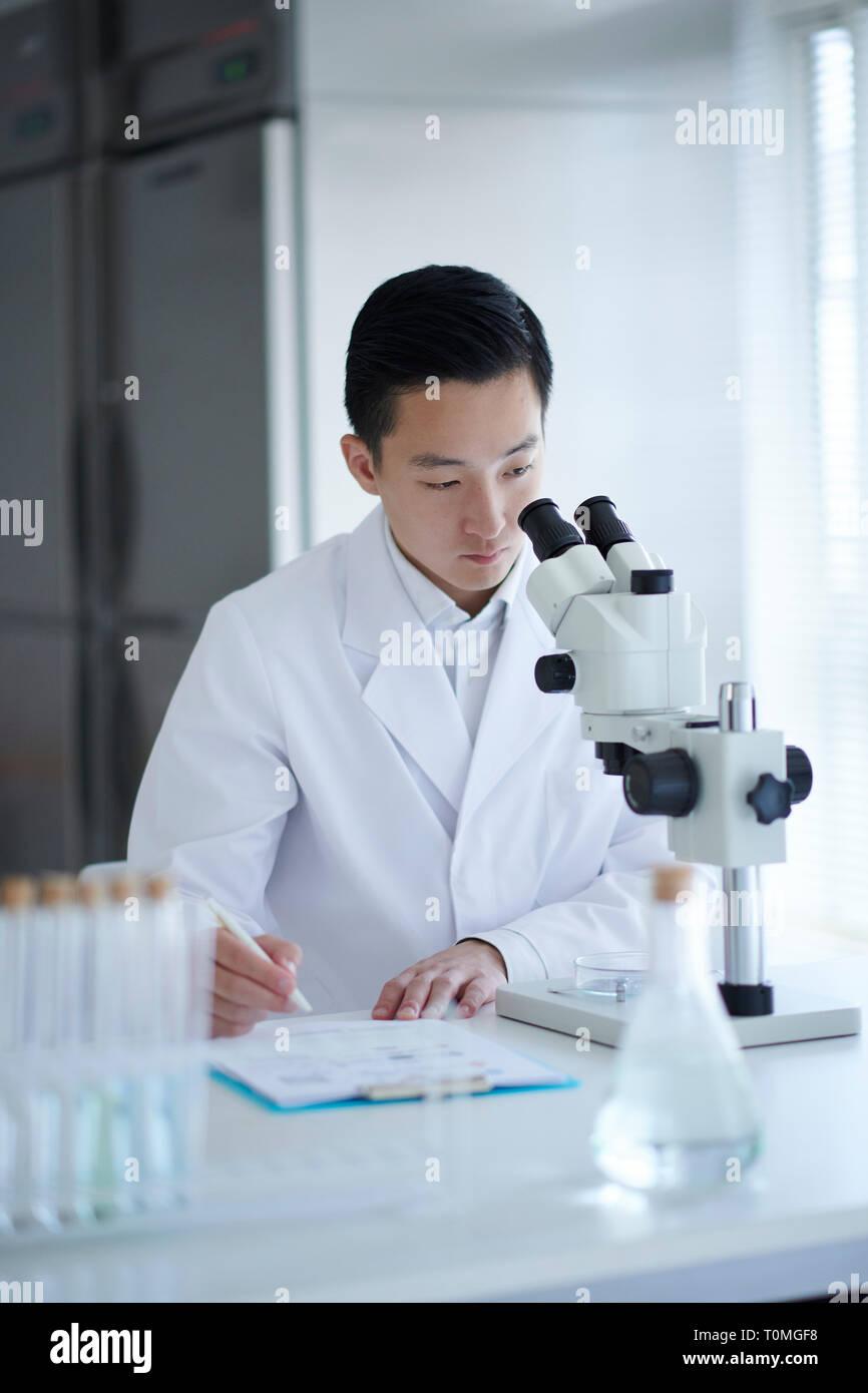 Cornée réalisée à partir de cellules souches