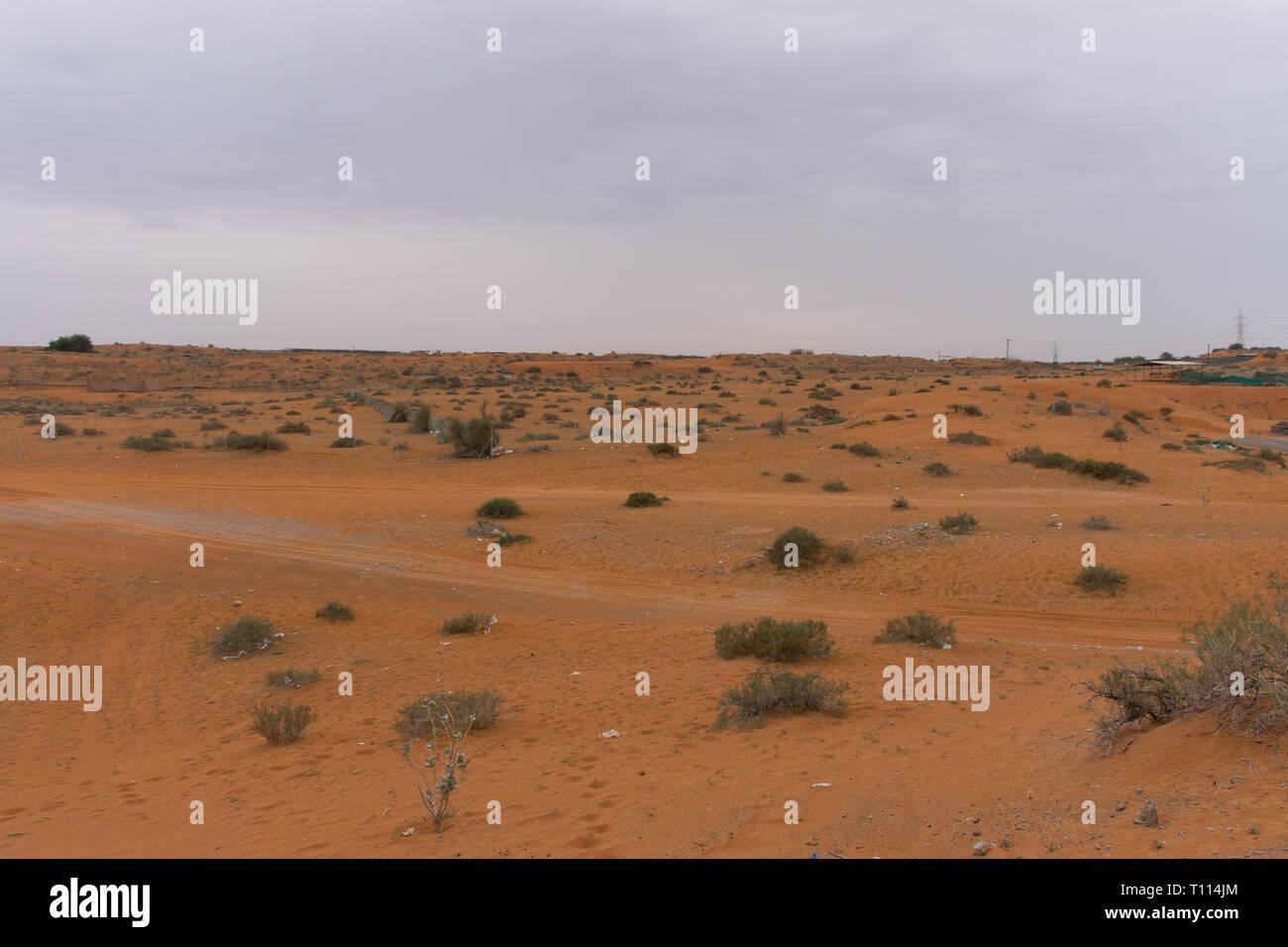 Ras al Khaimah, Émirats arabes unis: Thunder nuages sur le sable et les plantes dans la zone ferme des chameaux. Banque D'Images