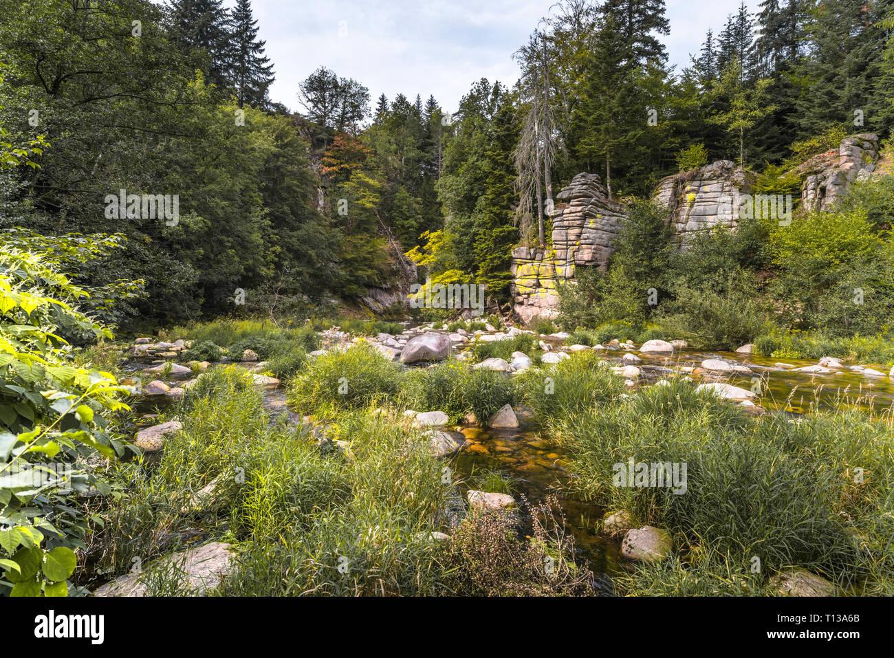 Partie bientot dans la section centrale de la rivière Murg; nord de la Forêt Noire, en Allemagne, la nature sauvage dans la vallée de la Murg près de Forbach Photo Stock