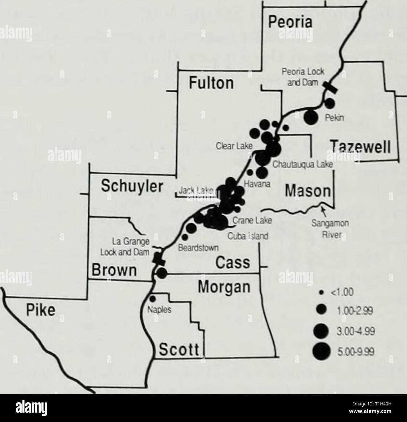 La distribution et l'abondance de la distribution et l'abondance de l'hiver, les populations de pygargues à tête blanche dans la région de Illinois distributionabun129a Année: 1988 Fig. 24.-nombre moyen ol b.iUl eagles j'uilliiii,recensement est inférieure llie Illinois Ri' 299 • innied inenior-99 3,00-4,60 par une er Région. 1972-1986. Fig. 22.-Fastern Senacliw sh, en'ine L.tk La densité estimée de pygargues à tête blanche dans la région de la rivière de l'Illinois inférieur ( en moyenne).5.i par mile river ou 0.49 par squaie mile d'habitats humides. La densité moyenne par scjuare m des zones humides (0,49) dans cette région a été slighth plus élevé que la valeur Banque D'Images