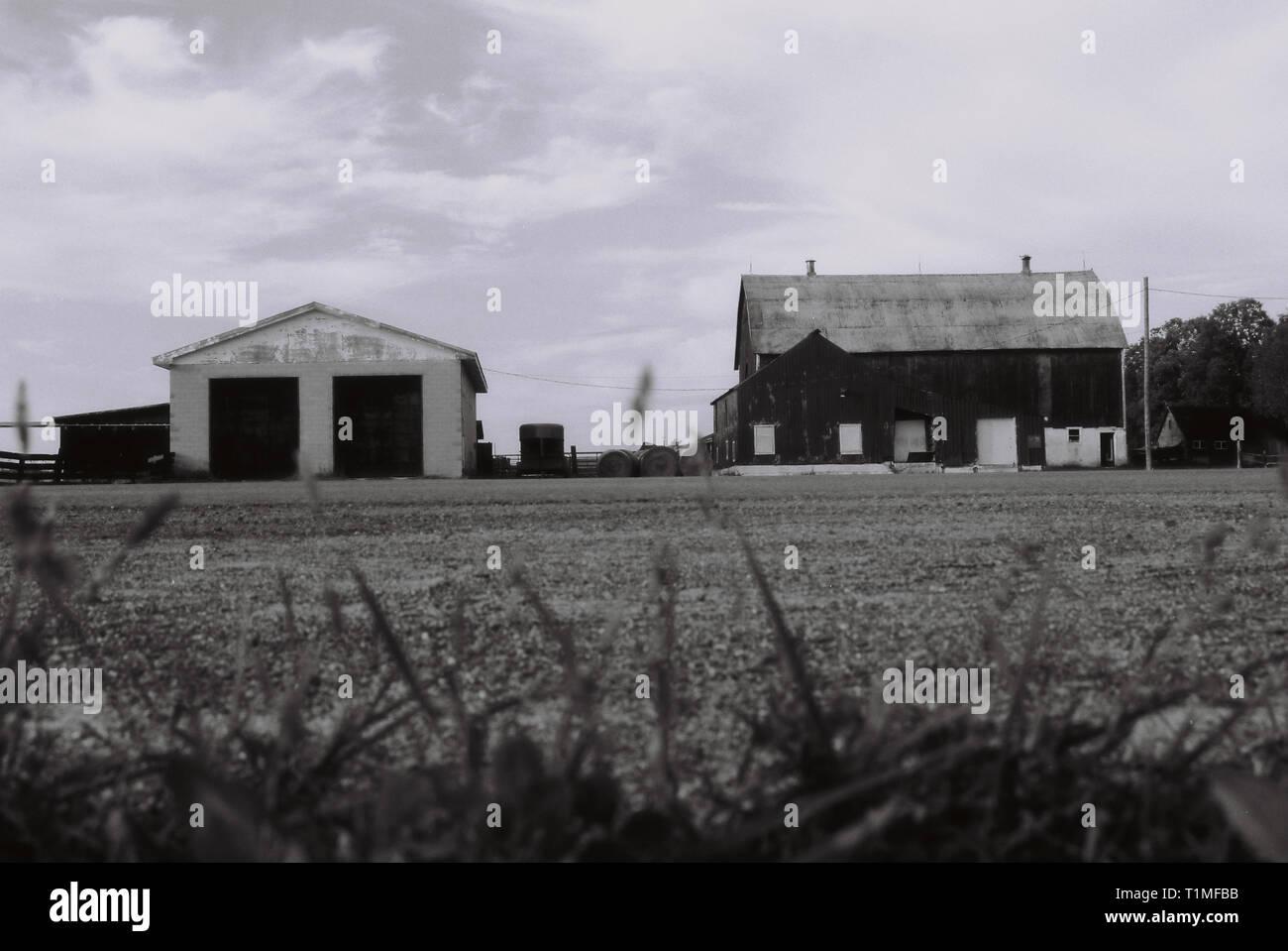 Grange en Elginburg, Ontario, Canada - Haute qualité négatif numérisé - 35 mm - Photo prise en 2002 Photo Stock