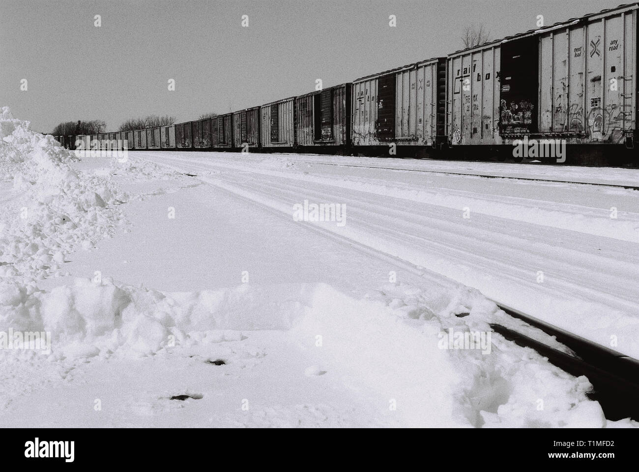 En train Elginburg, Ontario, Canada - Haute qualité négatif numérisé - 35mm - Photo prise en 2002 Photo Stock