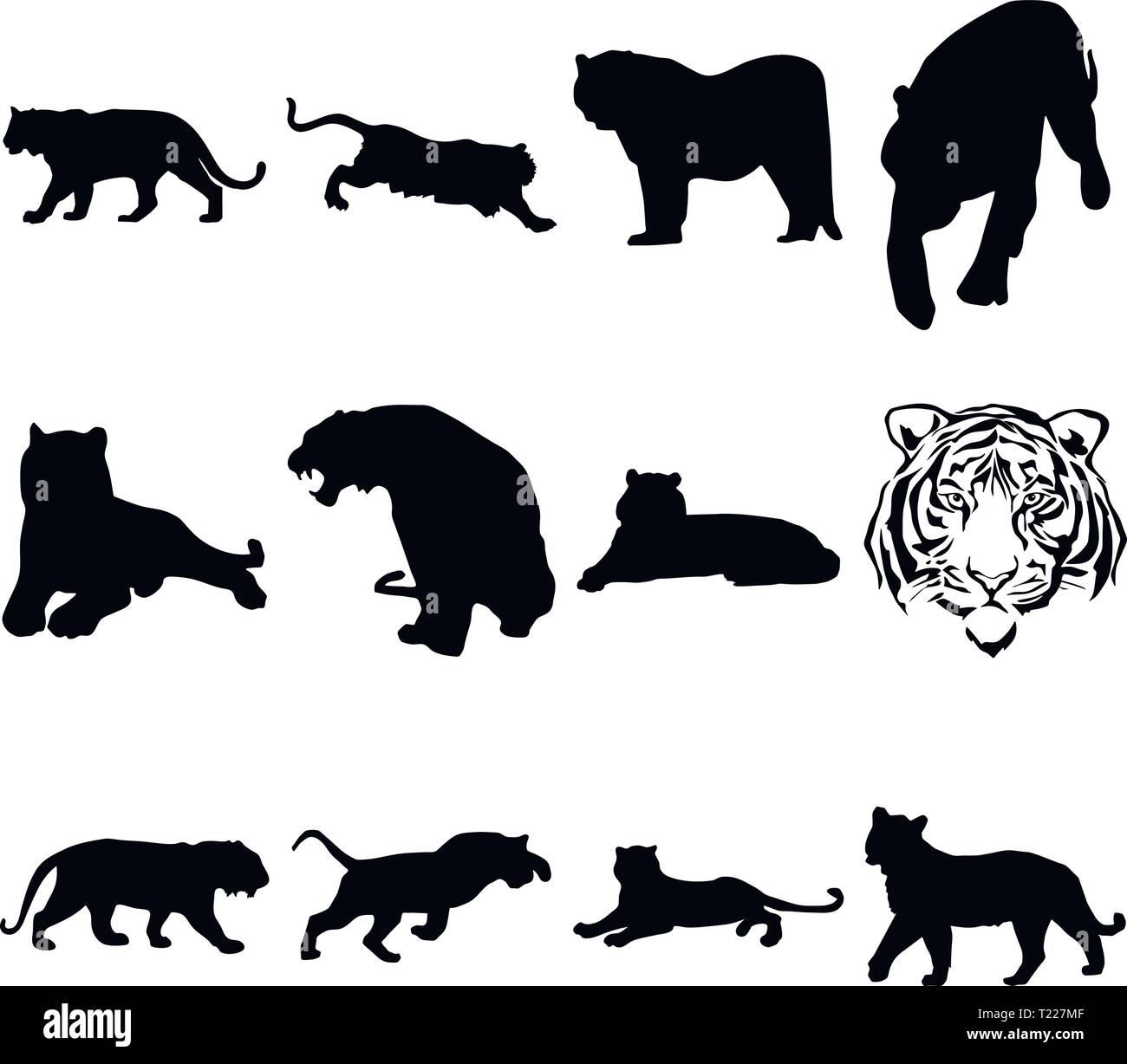 Une collection de silhouettes d'un tigre dans différentes positions Photo Stock