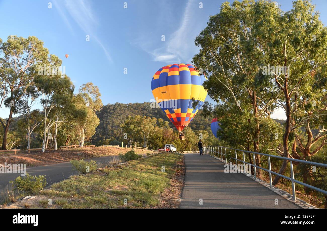 Canberra, Australie - 10 mars 2019. Vol en montgolfière dans l'air au-dessus de Montagne Noire et Tour Telstra, dans le cadre de la spectaculaire Ballon Fes Banque D'Images