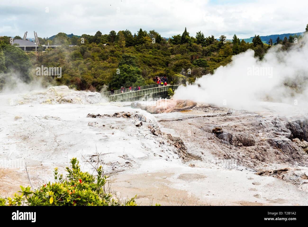 Hot Springs de Te Puia, Rotorua en Nouvelle-Zélande sur l'Île du Nord Photo Stock