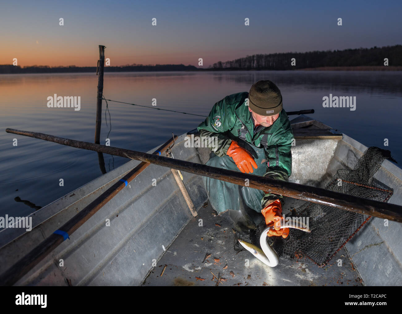 Pike Perches Photos & Pike Perches Images - Alamy