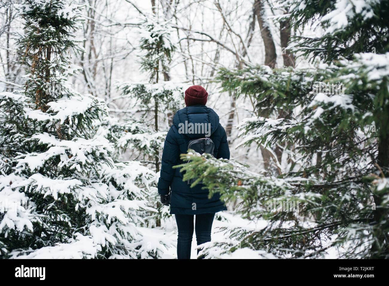 Vue arrière du jeune femme marche en forêt d'hiver Banque D'Images