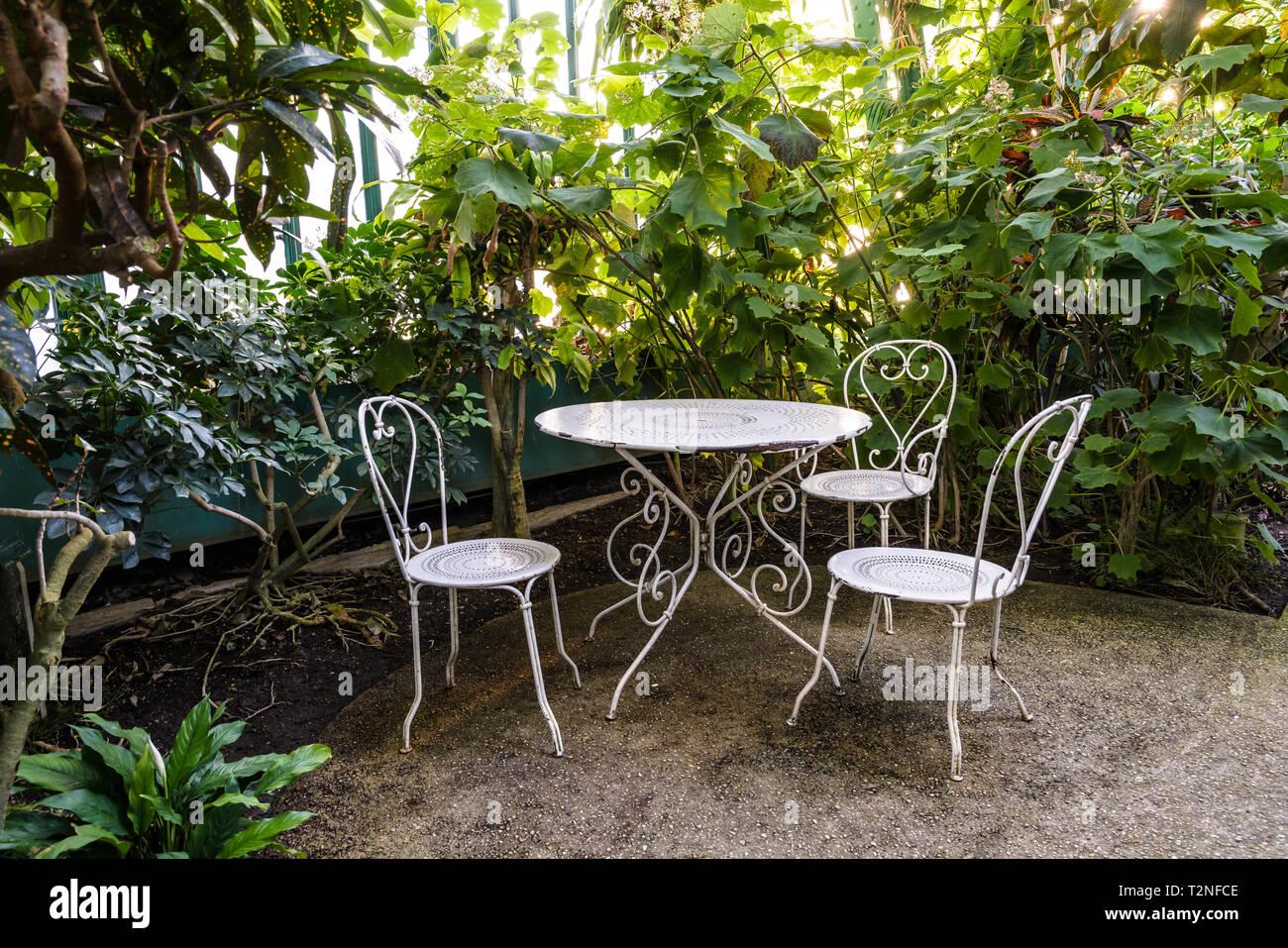 Jardin en fer forgé blanc situé dans le palmarium, la grande serre ...