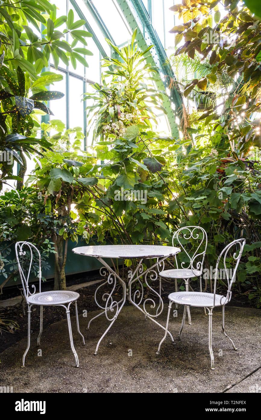 Jardin en fer forgé blanc situé dans le palmarium, la grande ...