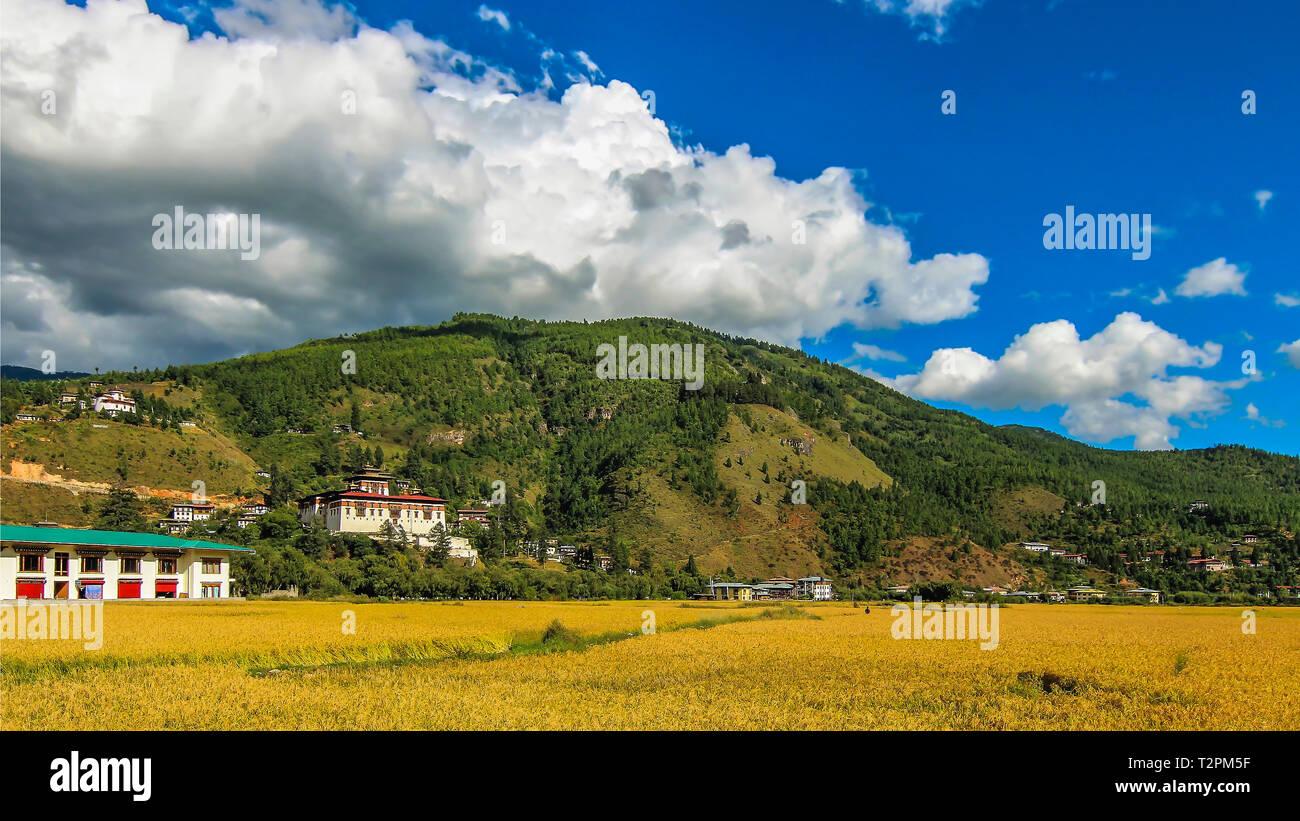 Les prairies de Thimpu et Tashichho Dzong dans l'arrière-plan Photo Stock