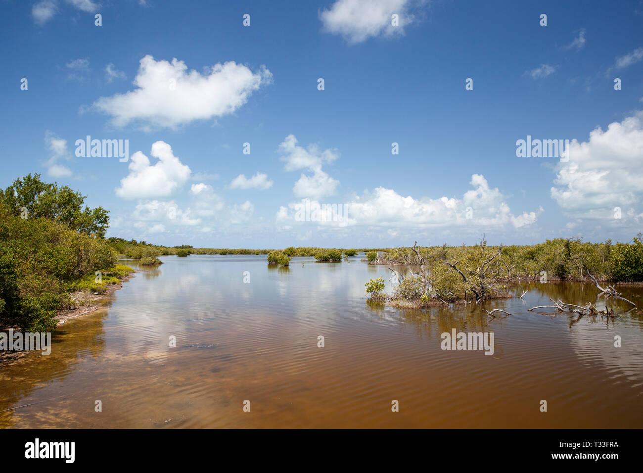 À l'intérieur de la lagune, l'Atoll de Chinchorro Banco Chinchorro, mer des Caraïbes, Mexique Banque D'Images