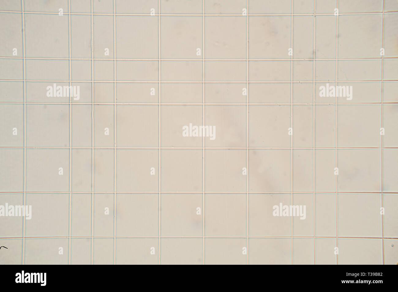 Vue microscopique de Thoma net chambre Banque D'Images