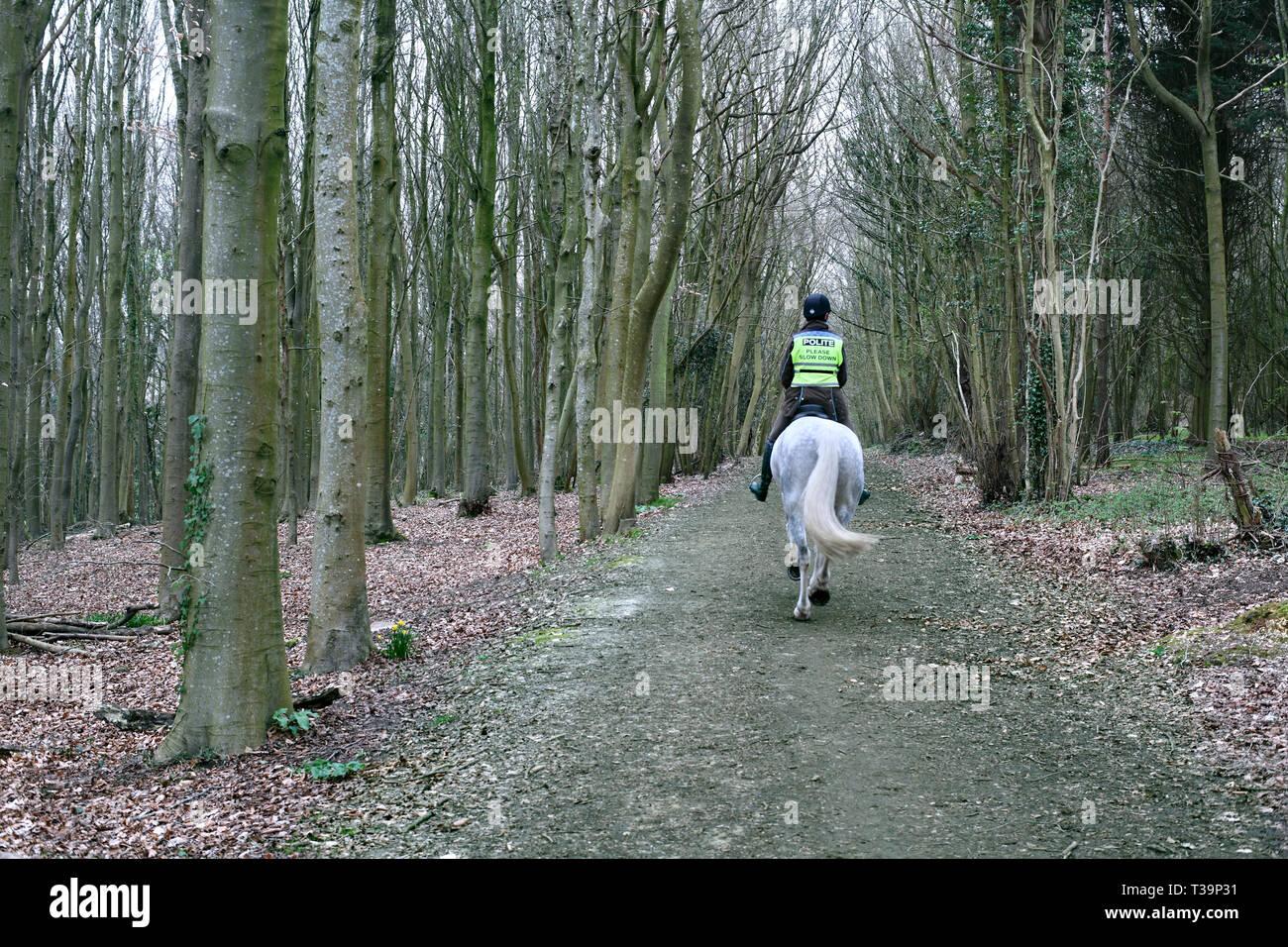 Le cheval et le cavalier dans le bois, près de Millbank Stanmer Park, Brighton. Photo Stock