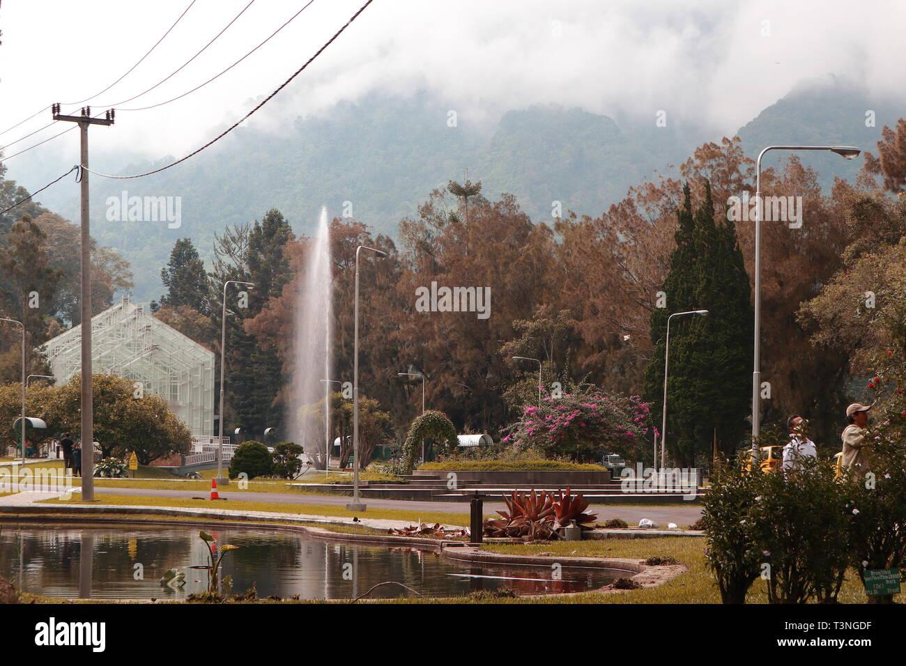 Jardin botanique avec une grande montagne Photo Stock