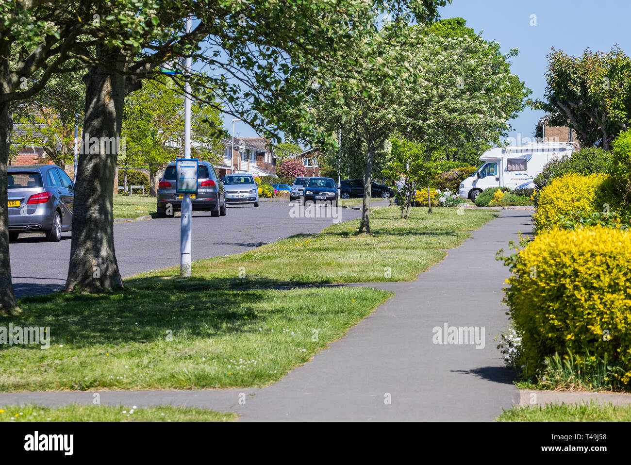 Les arbres et de la chaussée par une route dans un quartier résidentiel calme de Littlehampton, West Sussex, Angleterre, Royaume-Uni. Photo Stock