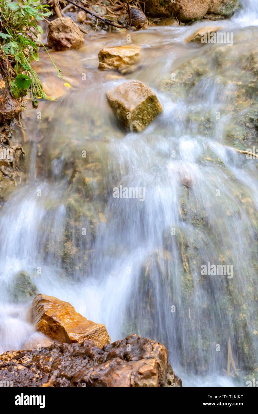 Les petites cascades de chutes sur un ruisseau de montagne au printemps. Parod River. Israël. Paysage Banque D'Images