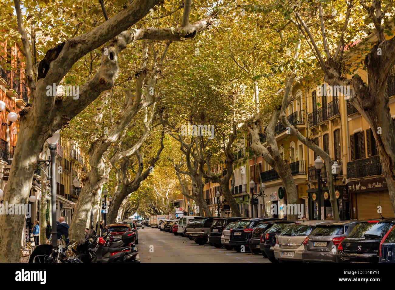 Dénia, Alicante, Espagne, le 21 novembre 2018: Marques de Campo Street, rue principale. La rue commerciale Banque D'Images