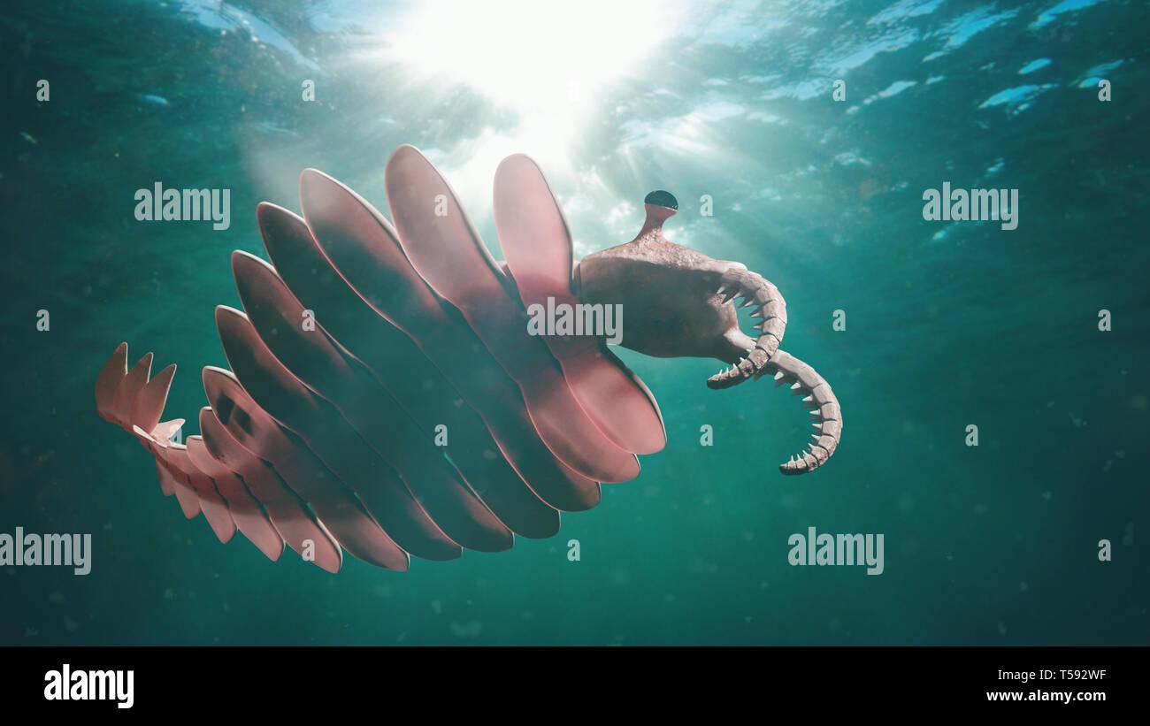 Anomalocaris, forme de vie de la période cambrienne (3d illustration scientifique) Banque D'Images